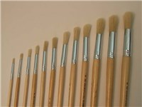 Eterna 582 Brushes